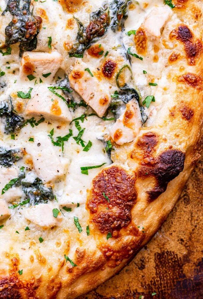 edge of the Chicken Alfredo Pizza crust