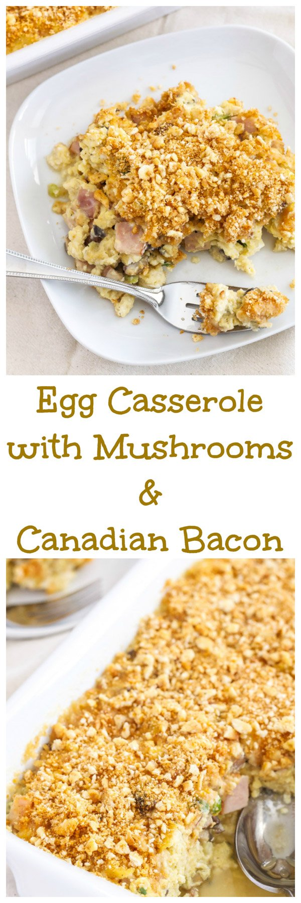 Egg Casserole with Mushrooms and Canadian Bacon | Make this egg ...