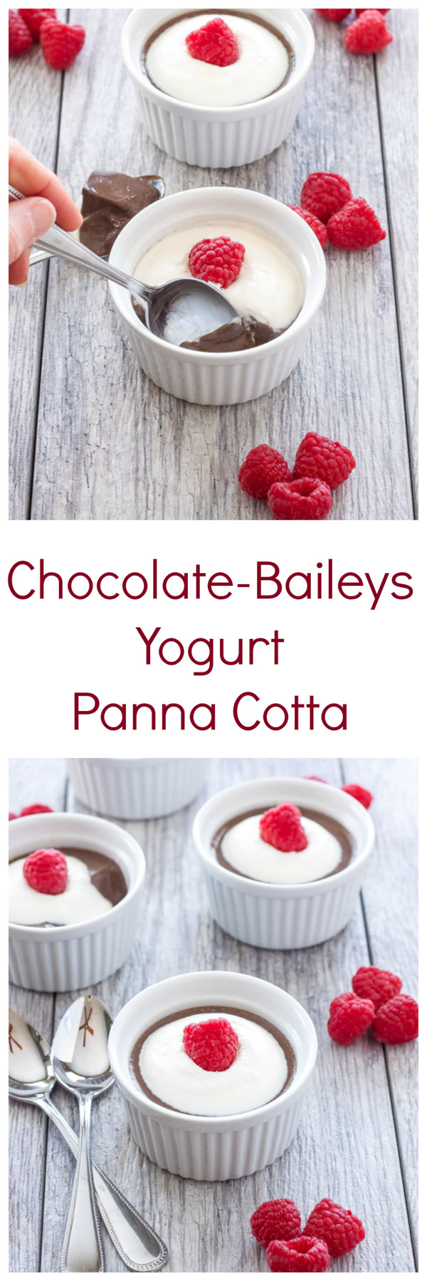 Chocolate-Baileys Yogurt Panna Cotta | Chocolate panna cotta spiked with Baileys Irish cream! | @reciperunner