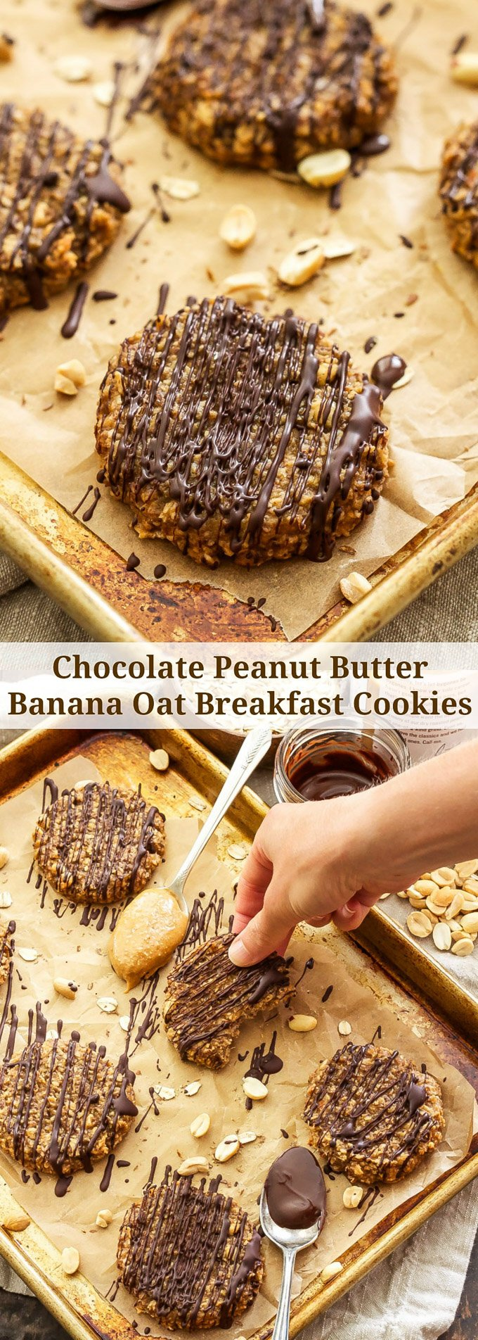 Chocolate Peanut Butter Banana Oat Breakfast Cookies | These tasty, gluten-free, easy to make breakfast cookies will become a fast favorite in your house! No flour, oil, butter or refined sugars.