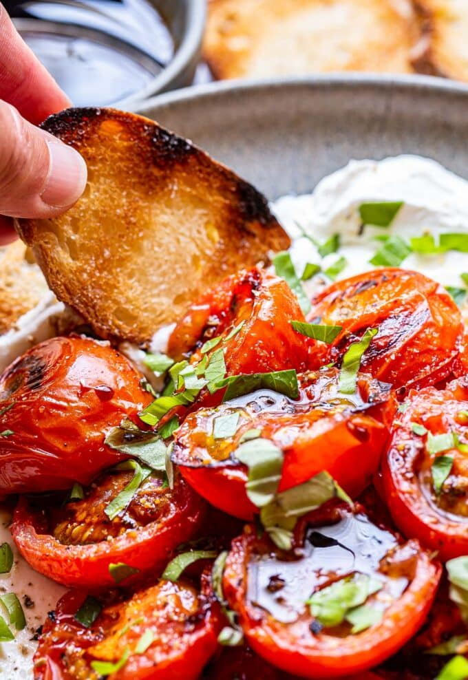 hand dipping a baguette slice into the Grilled Tomatoes with Ricotta