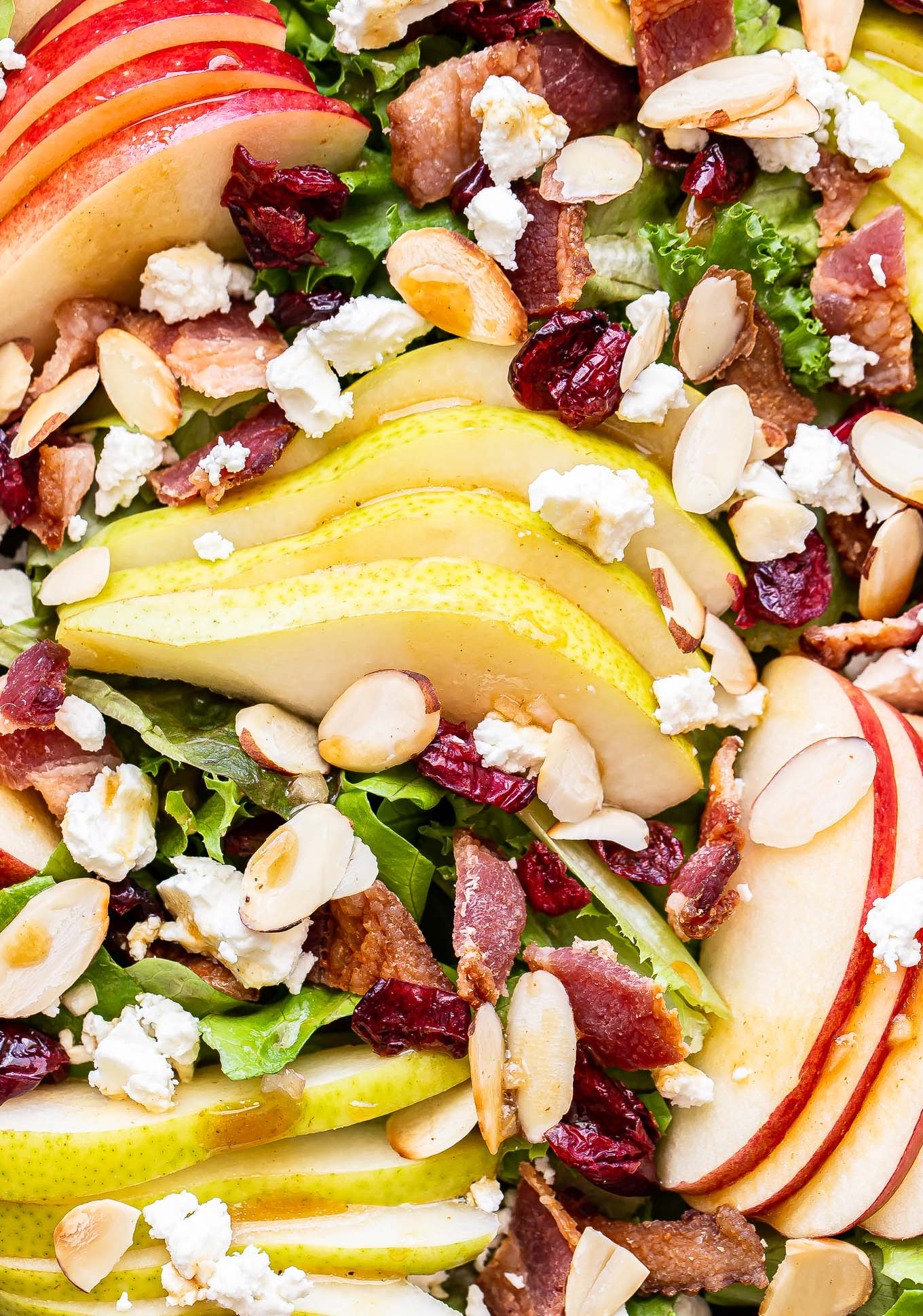 Autumn Apple and Pear Salad with dried cranberries, feta, almonds and bacon.